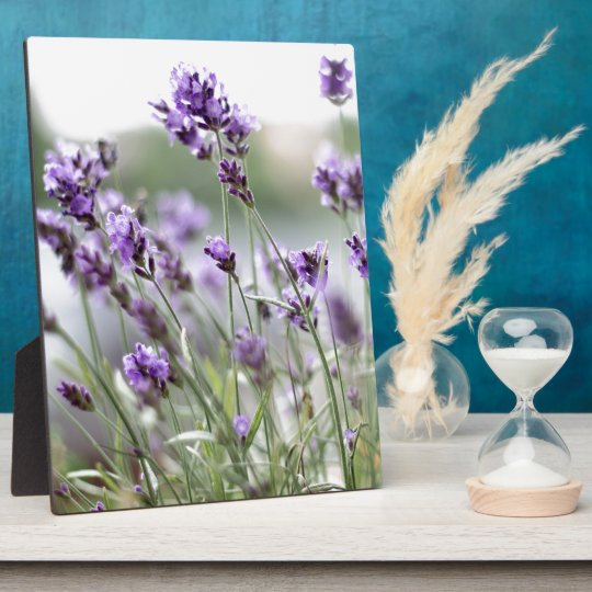 Beautiful Custom Spring Flowers - Lavender Plaque