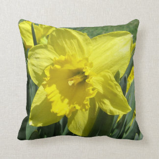 Beautiful daffodil cushion