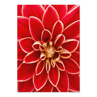 Beautiful Dahlia Flower Petals Design 13 Cm X 18 Cm Invitation Card