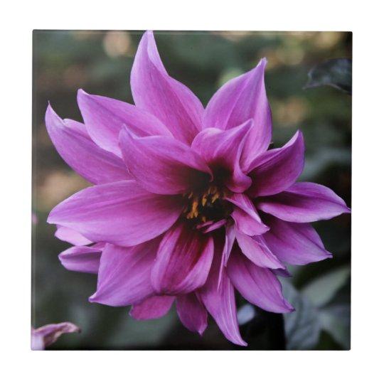 Beautiful Dahlia Flower Small Square Tile