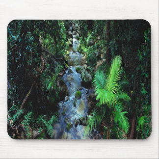 Beautiful Daintree National Park Mouse Mat