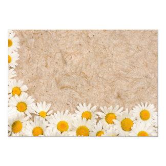 Beautiful daisies card