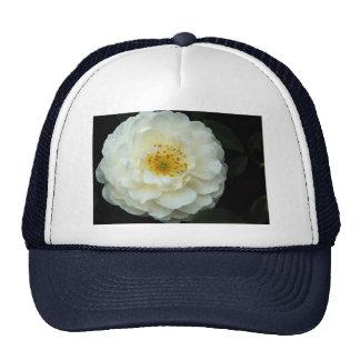 Beautiful Damask Trucker Hats