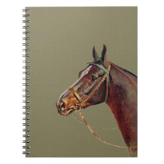 Beautiful dark brown horse, vintage portrait notebook