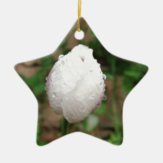 beautiful depiction of poppy on many products christmas ornament