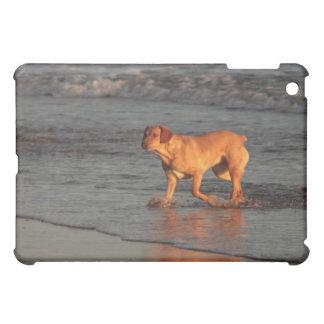 Beautiful dog in the Sea iPad Case