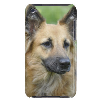 Beautiful Dog iPod Case-Mate Cases