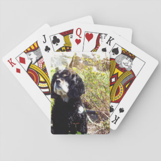 Beautiful Dog Playing Cards