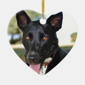 Beautiful dog with hazel eyes christmas ornament