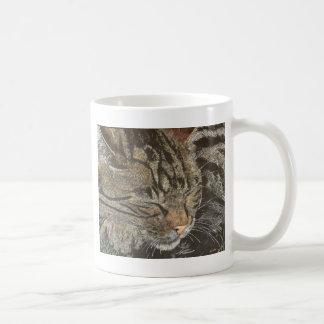 Beautiful Dreamer (sleeping tabby) Coffee Mug