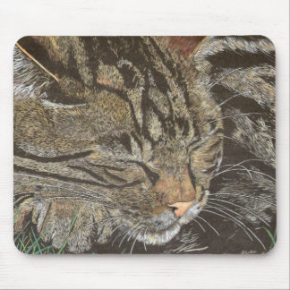 Beautiful Dreamer (sleeping tabby) Mouse Mat