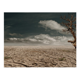 Beautiful drought desert scenery post cards