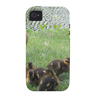 BEAUTIFUL DUCK FAMILY Case-Mate iPhone 4 CASE
