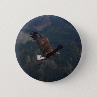 Beautiful eagle in flight 6 cm round badge