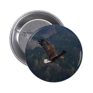 Beautiful eagle in flight 6 cm round badge