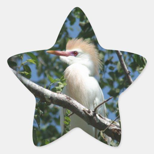 Beautiful Egret in Breeding Plumage Sticker