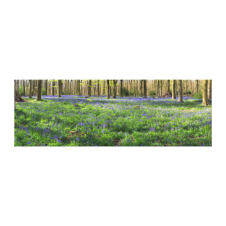 Beautiful English Bluebell Wood Canvas Print
