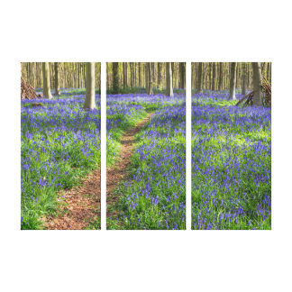 Beautiful English Bluebell Wood Wrapped Canvas