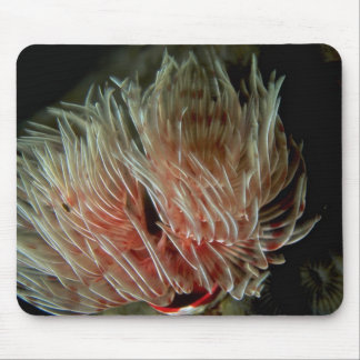 Beautiful Exposed feeding and breathing apparatus Mouse Pad
