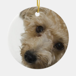 Beautiful Eyes of a Yorkie Poo Puppy Round Ceramic Decoration