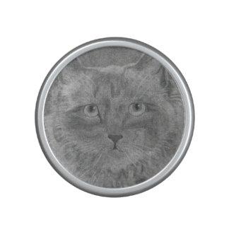 Beautiful Eyes Siamese Cat Speaker