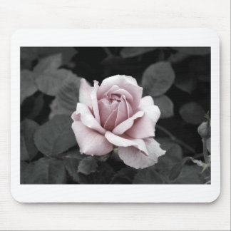 Beautiful faded pink rose print mouse pad