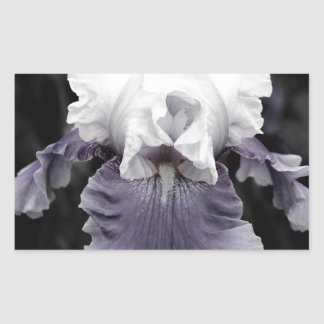 Beautiful faded purple iris print rectangular sticker