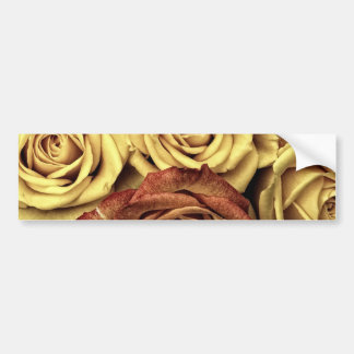 Beautiful Faded Roses Vintage Floral Bouquet Bumper Sticker