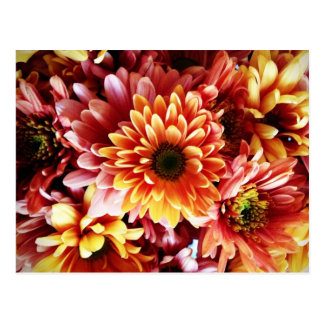 Beautiful Fall Floral Bouquet Design Gifts Postcard