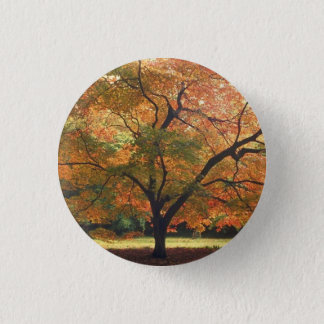 Beautiful Fall Tree 3 Cm Round Badge