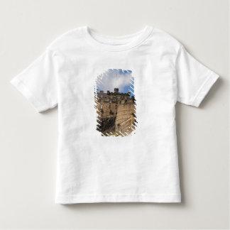 Beautiful famous giant Edinburgh Castle in Toddler T-Shirt