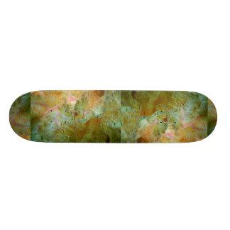Beautiful Feathery gills of a Spanish dancer nudib 20 Cm Skateboard Deck