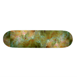 Beautiful Feathery gills of a Spanish dancer nudib Skateboard Deck
