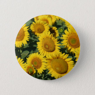 Beautiful Field of Sunflowers 6 Cm Round Badge