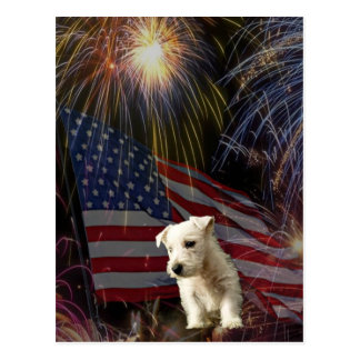 Beautiful Fireworks Celebration - Westie Design Postcard