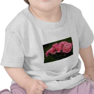 Beautiful Floribunda 'Pleasure' Shirts