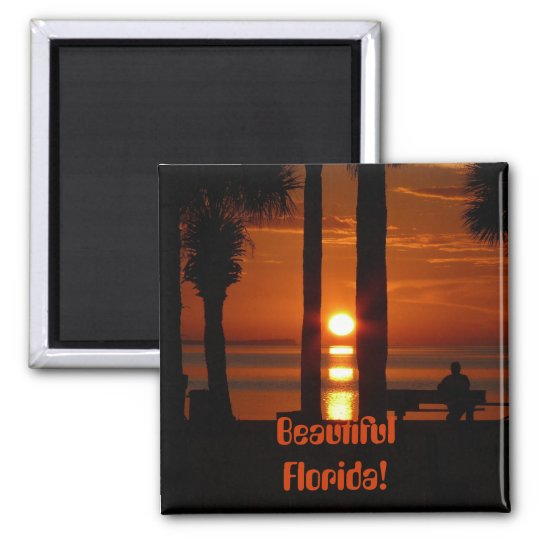 Beautiful Florida! Magnet