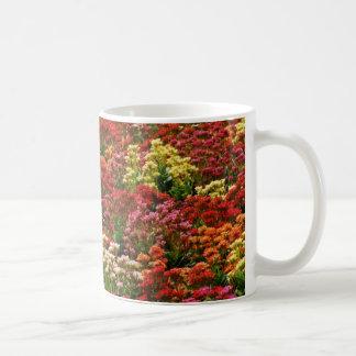 Beautiful flower field mug