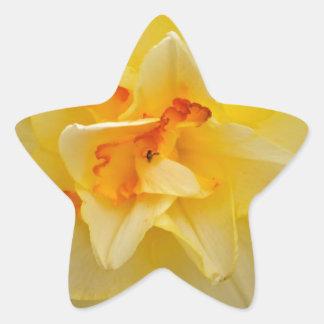 Beautiful flower products star sticker