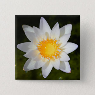 Beautiful flower white water lily 15 cm square badge