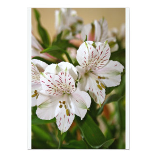 Beautiful flowers Card 13 Cm X 18 Cm Invitation Card