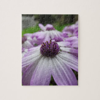 beautiful flowers in the sun jigsaw puzzle