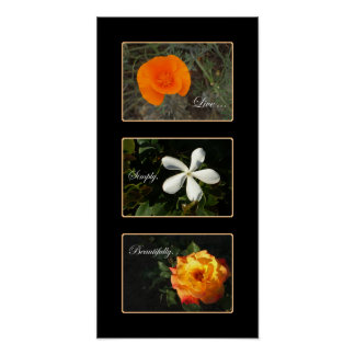 Beautiful flowers triptych poster