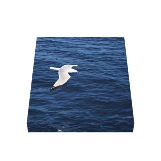 beautiful flying seagull  seascape canvas print