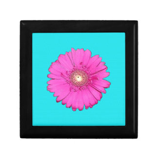 Beautiful Fuchsia Gerbera Daisy Gift Box