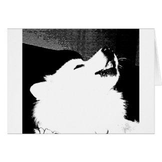 Beautiful furry Samoyed white dog Greeting Card