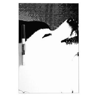 Beautiful furry Samoyed white dog Dry-Erase Boards
