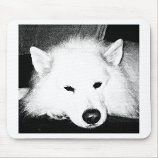 Beautiful furry Samoyed white dog Mousepad