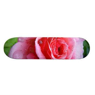 Beautiful Garden Single Wet Pink Rose Skateboard