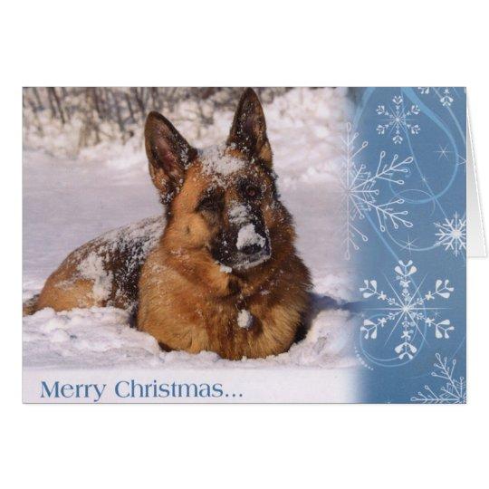 Beautiful German Shepherd Dog in snow Card